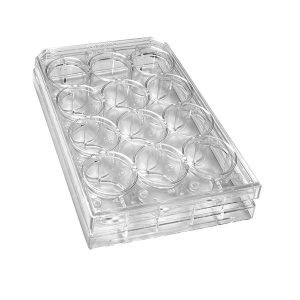 Sterile 12-Well Plates With Lids. Polystyrene, Natural, Individually Packed