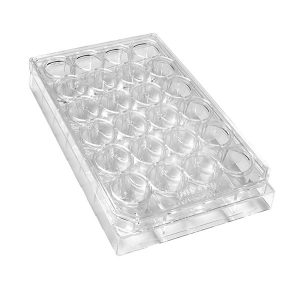 Sterile 24-Well Plates With Lids. Polystyrene, Natural, Individually Packed
