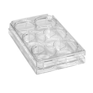 Sterile 6-Well Plates With Lids. Polystyrene, Natural, Individually Packed